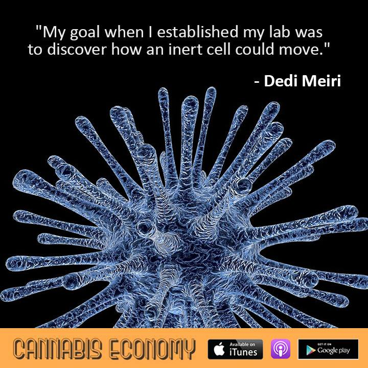 Ep.362: Prof. Dedi Meiri, Technion Israel Institute of Technology