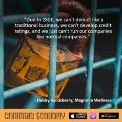 Ep. 378: Debby Goldsberry, Magnolia Wellness