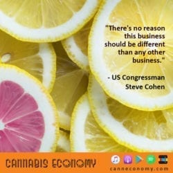 Ep. 399: US Congressman Steve Cohen,